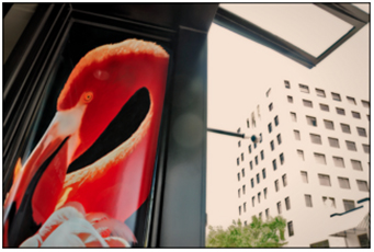 A photograph of a flamingo on the side of an urban building in West Palm Beach, Florida