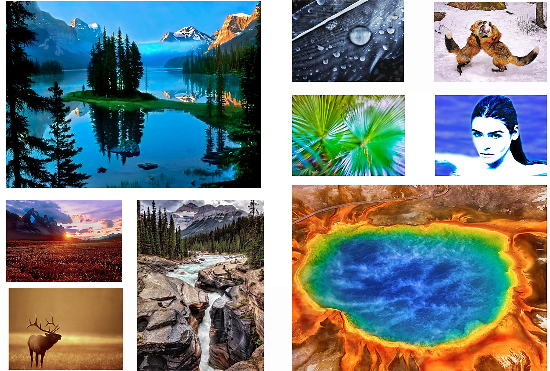 A collection of Fine Art Prints offered by photographer Raymond Gehman