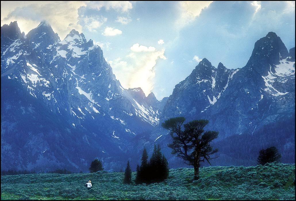 "Raymond Gehman, ""Artist In Sage Meadow"", Grand Teton National Park, Wyoming"