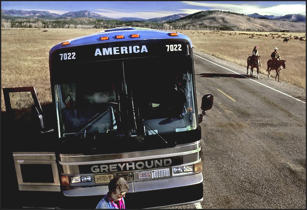 "Raymond Gehman, ""Cattle Roundup And Tourist Bus"", Grand Teton National Park, Wyoming"