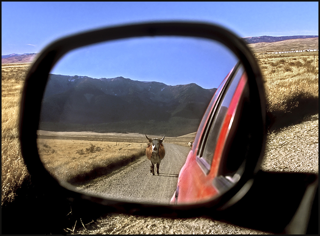 "Raymond Gehman, ""On The Road In Centennial Valley"", Montana"