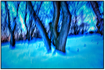 Abstract winter landscape with bare trees and a snowy ground